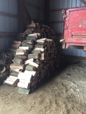 Lots of wood cut!